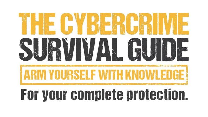 Cybercrime Survival Guide