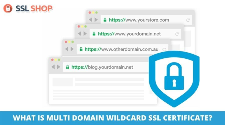 WHAT IS MULTI DOMAIN WILDCARD SSL CERTIFICATE_