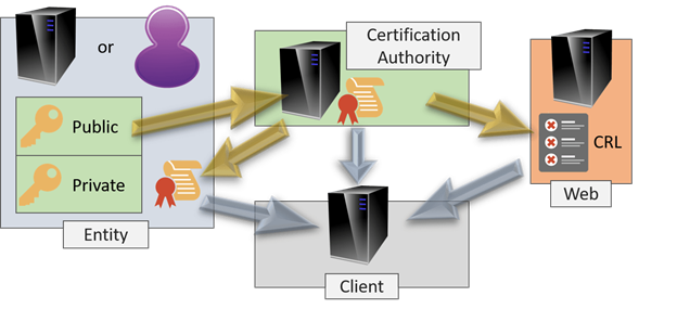 authentication of server and the user