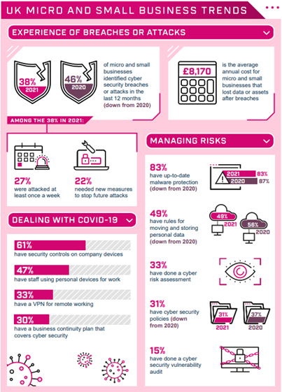 uk micro cyber security breaches survey
